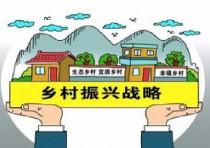 农业农村发展下一个风口:全面乡村振兴构建农村市场机制